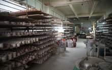 Moychay porcelain factory in dehua fujian china 4